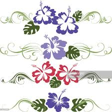 tropical ornaments vector getty images