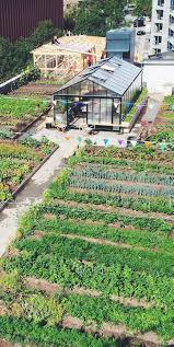 organic gardening tips everyone should be aware of rooftop