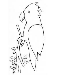 coloriage perroquet à imprimer gratuitement