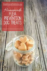 314 best homemade dog treats images on pinterest dog food
