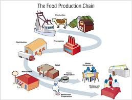 from farm to table the struggle to trace produce from farm to table netnebraska org