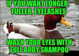 Advice Mallard Meme Generator - malicious advice mallard meme imgflip