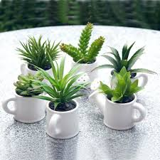 remarkable ceramic plant pots indoor for sale build a pizza oven