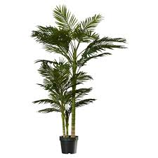 beachcrest home brookings palm tree in pot reviews wayfair