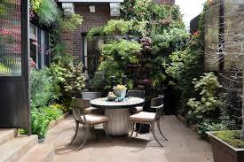 courtyard garden ideas birds of prey courtyard garden by living green