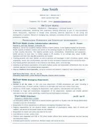 Sample Word Document Resume by Free Resume Templates Professional Template Download Sample