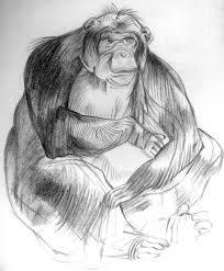 drawing u0026 sketches by chandni jain at coroflot com