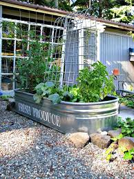 cute idea for container garden blue roof cabin a manageable