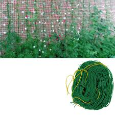 compare prices on net for climbing plant online shopping buy low