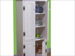Kitchen Wall Storage Cabinets Furniture Amazing Short Cabinet With Doors Cabinets And Storage