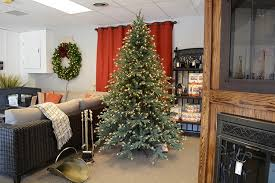 Pre Decorated Christmas Trees Fully Decorated Artificial Christmas Trees 55 Ft And Under Pre