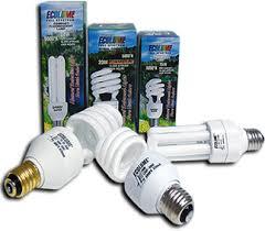 natural full spectrum lighting full spectrum ecolume compact fluorescent ls natural daylight
