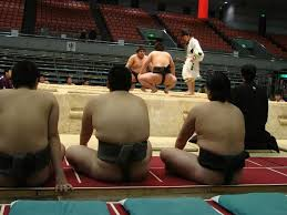 comment cuisiner une b馗asse 55 best sumo images on sumo wrestler marshal arts and