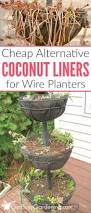 Hooks And Lattice by 25 Trending Planter Liners Ideas On Pinterest Planter Box