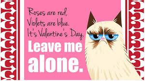 grumpy cat valentines 15 grumpy cat attitude cover photos for