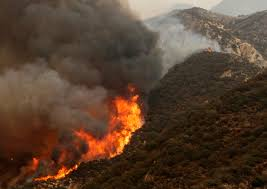 Canadian Wildland Fire Training by Wildfires Ravage Area Near Los Angeles