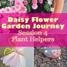 daisy flower garden journey session 5 take action project