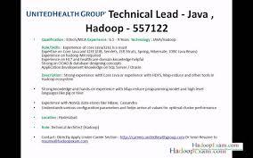 Enterprise Data Architect Resume Hadoop Architect Resume Resume For Your Job Application