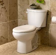 elongated vs round toilet bowl round designs