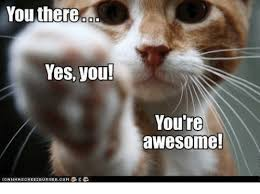 You Are Awesome Meme - you there yes you you re awesome meme on me me