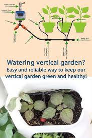 Watering Vertical Gardens - vertical garden green wall