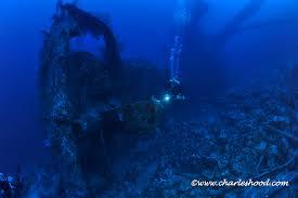 red sea u2013 tekstreme diving blog