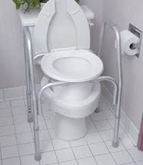 Lowes Bidet Toilet Seat Lowe U0027s Handicapped Toilet Seat Risers Frame Over Handicap Raised