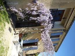 chambre d hotes l isle sur la sorgue la vitalis chambres d hôtes vaucluse provence