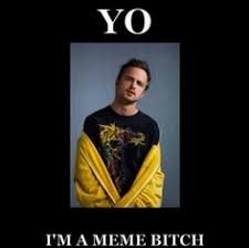 Magnets Bitch Meme - breaking bad walt jr meme funny pinterest breaking bad