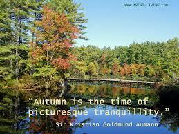 picturesque and colourful autumn quotes archi living com