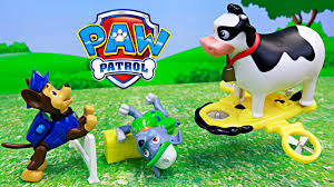 paw patrol rocky tipping rescued chase