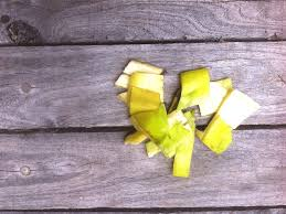 10 ways to use banana peels in your garden as fertilizer frugal