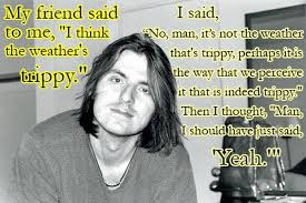 Mitch Hedberg Memes - hilarious mitch hedberg quotes 20 jpg 700 467 funny pinterest