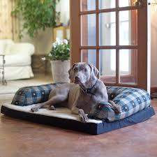 beasleys couch microsuede dog bed hayneedle