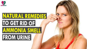 Ammonia Smell In Bathroom Natural Remedies To Get Rid Of Ammonia Smell From Urine Health
