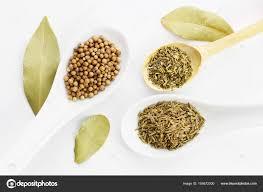origan en cuisine diverses épices origan graines de coriandre feuilles de laurier et