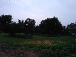 1 5 acre of land in near to subavaram vizag sabbavaram