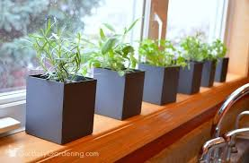 Window Sill Herb Garden Designs Indoor Windowsill Herb Garden Hardware Home Improvement