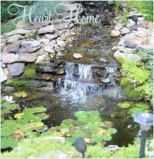 Diy Backyard Pond by 46 Best Pond Ideas Images On Pinterest Backyard Waterfalls