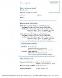 curriculum vitae formato pdf da compilare curriculum vitae modello 01 modello curriculum