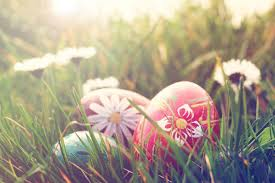 Easter Brunch Buffet by Easter Egg Hunt And Sunday Brunch Buffet In Napa Valley Tickets