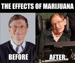 Not Even Once Meme - marijuana not even once imgur