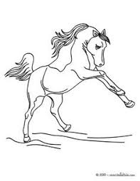 horse racing color pages these horse coloring pages are free