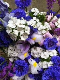 List Of Flowers by Notes And News From Shady Grove Gardens June Weddings Early June