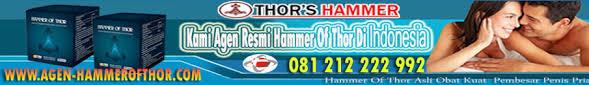 www agen hammerofthor com seo report seositecheckup com