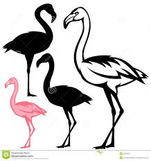 flamingo birds vector royalty free stock photography image 32928377