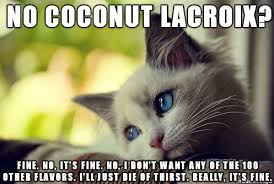 Lacroix Meme - memes maymays and image macros oh my stopdrinking