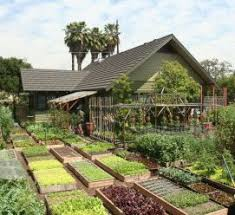 22 beautiful vegetable garden ideacoration co