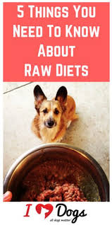 33 best raw food diet images on pinterest raw dog food dog food