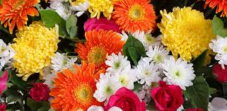 flowers delivered today my escondido florist order beautiful flowers delivered fresh